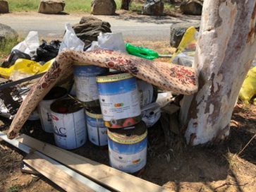 Lake Tuggeranong Clean -Up Australia Day, Sunday 1st March, 2020